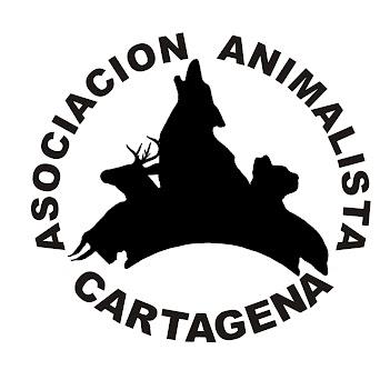 Asociación Animalista de Cartagena