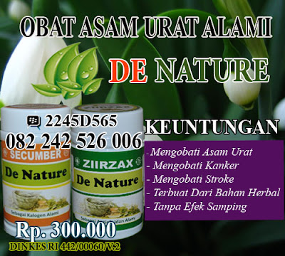 obat herbal asam urat dengan bahan alami