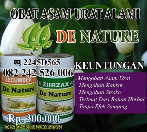 obat tradisional mujarab asam urat dan lambung