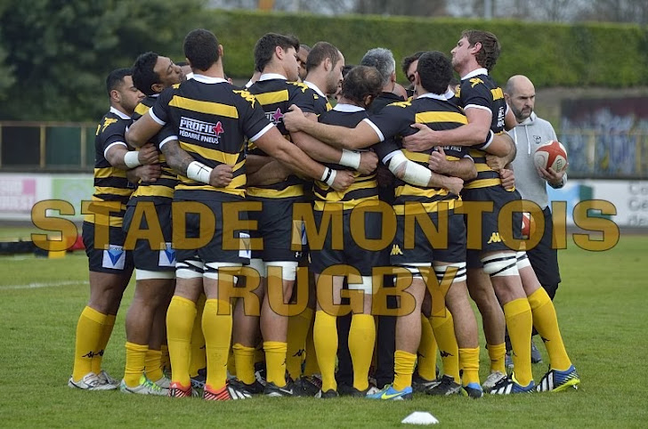 Photos Stade Montois Rugby