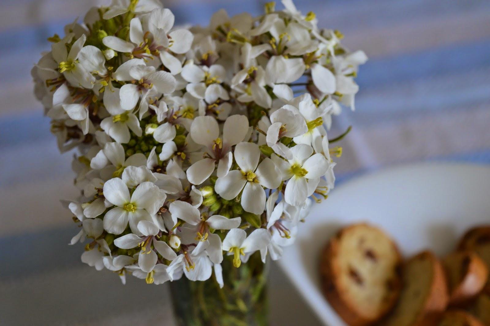 olaimar flores