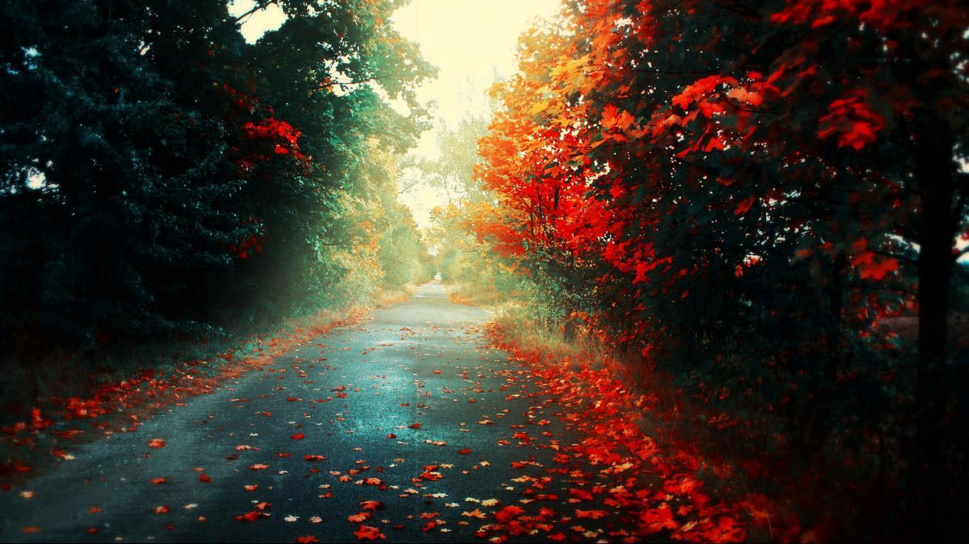 Hd wallpaper editing - Nature Road Hd Wallpapers