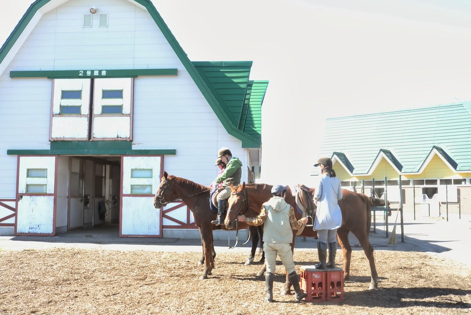 静内農業高校の厩舎。 贅沢な厩舎で、少し悪くなってしまった干し草を切っ... 北海道静内農業高校