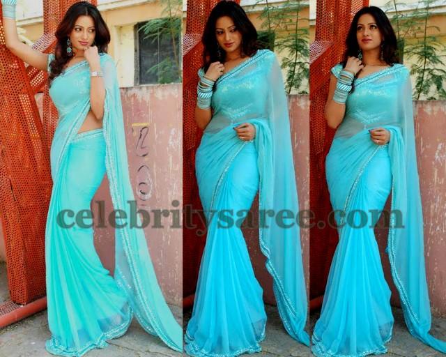 Udhaya Bhanu Sky Blue Shimmer Saree