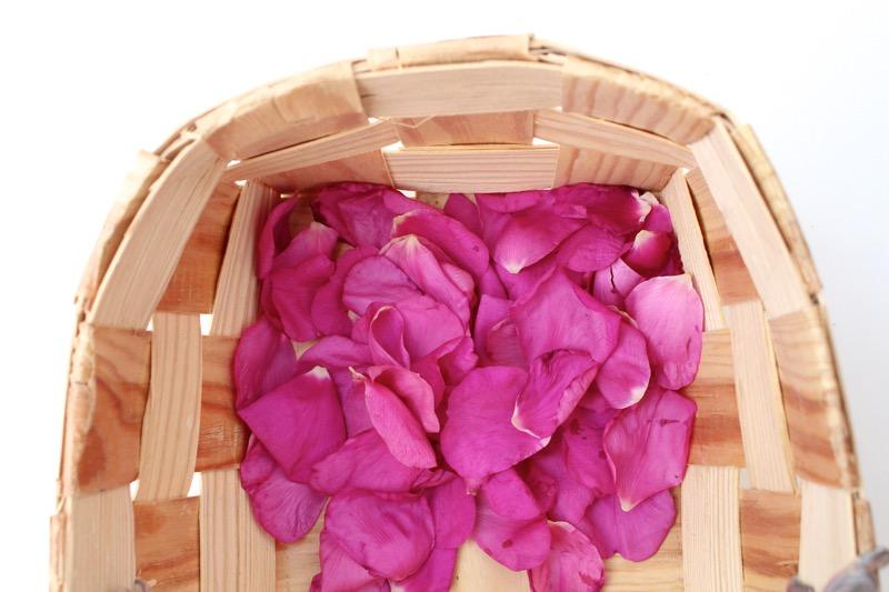 Pinkit ruusun terälehdet