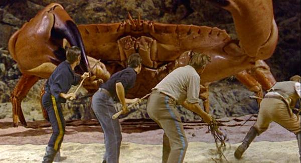 Image result for sinbad crab