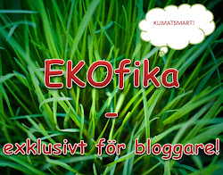 EKOfika 4 maj