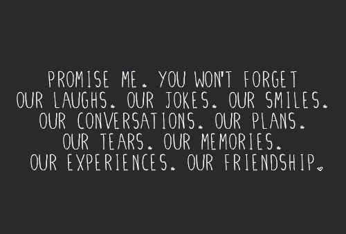 Friendship And Memories Quotes Tumblr : Promise me you won t forget our laughs jokes