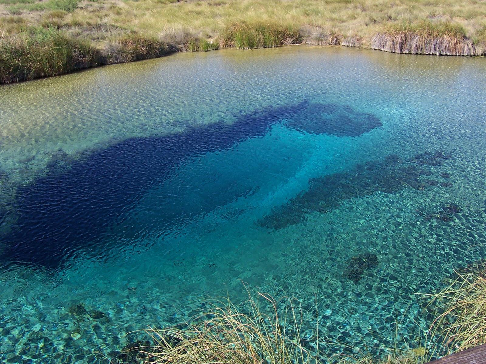 Los ambientes acu ticos ambientes acuaticos del pasado for Ambientes de argentina