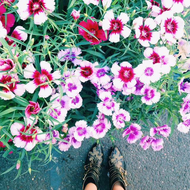 Chloe Boots, flower market via @fitzroyboutique