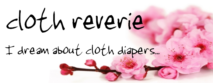 Cloth Reverie
