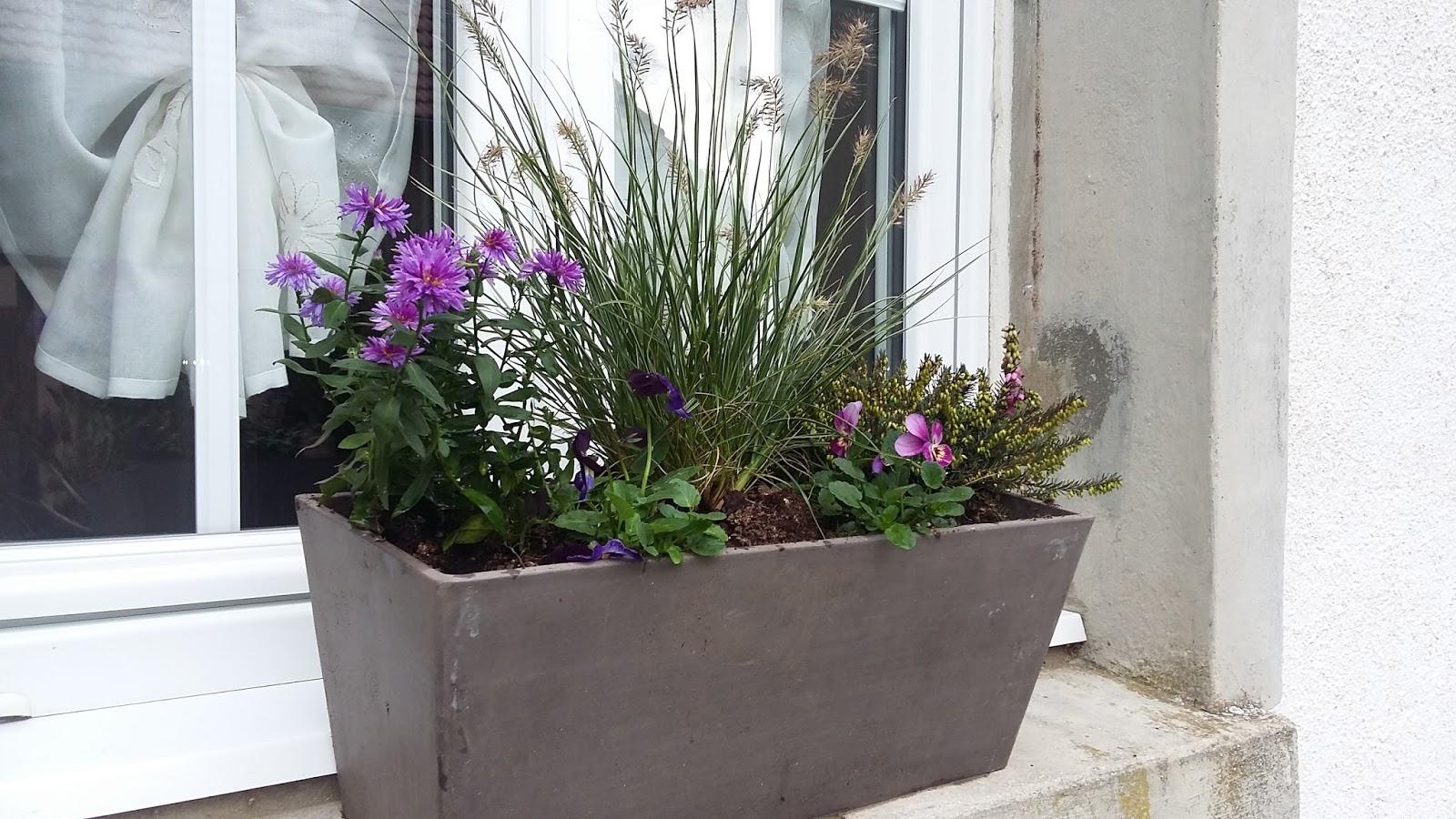 jardiniere d automne comment r aliser une jardini re d 39 automne femme actuelle du treillis. Black Bedroom Furniture Sets. Home Design Ideas