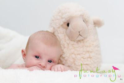 Winston Salem Baby Photographers - Fantasy Photography, LLC