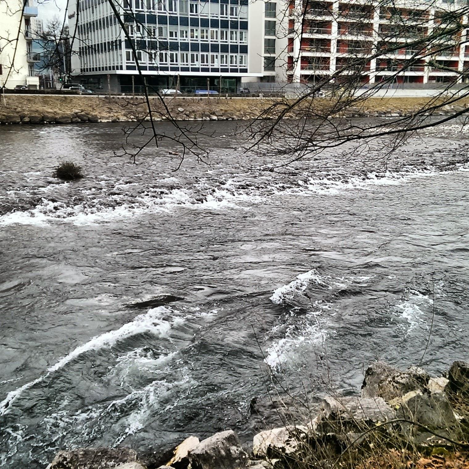 Zürich Schweiz Limmat Fluss Wasser