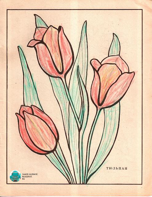 Разукрашка СССР советская версия для печати скан распечатать скачать старая из детства
