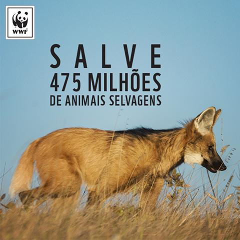Salve milhões de animais selvagens