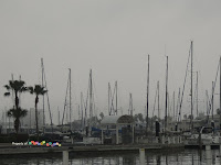 another part of the Marina...in the distance, unseen in the fog, are more buildings!