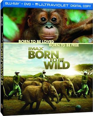 Born to be Wild (2011) 720p BRRip 278MB mkv Latino (SUBIDA A MIRRORUPLOAD) (NUEVOS LINKS)