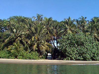 Playa Vizcaya, Limón
