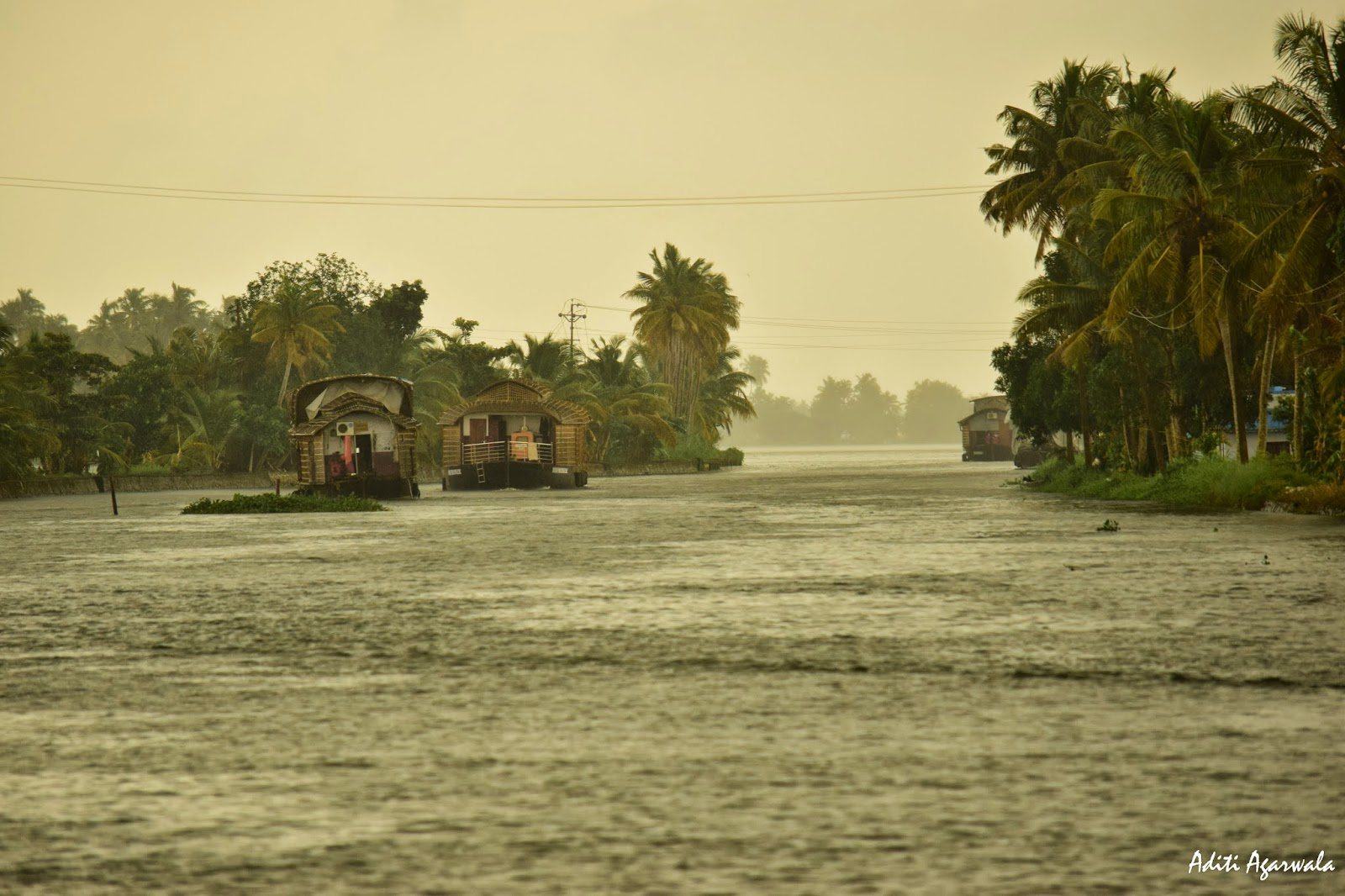 The beauty of Allepey Backwaters during the Monsoons