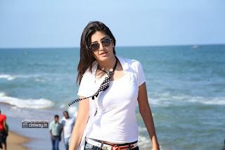 Ranam-Heroine-Poonam-Kaur-Stills