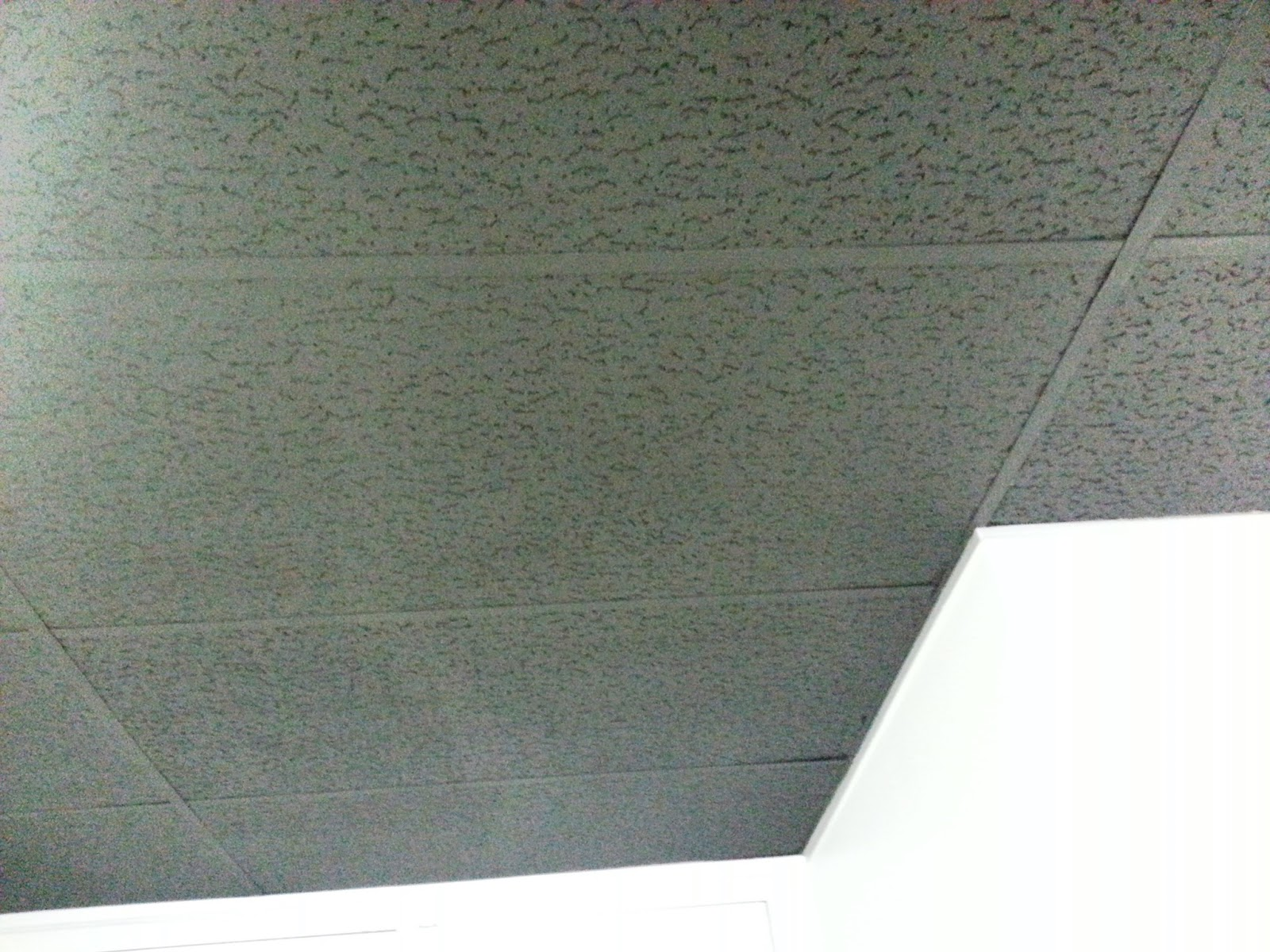 Spray paint for ceiling tiles