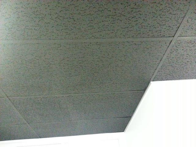 paint ceiling tile grid save