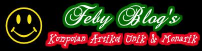 Feby Blog's
