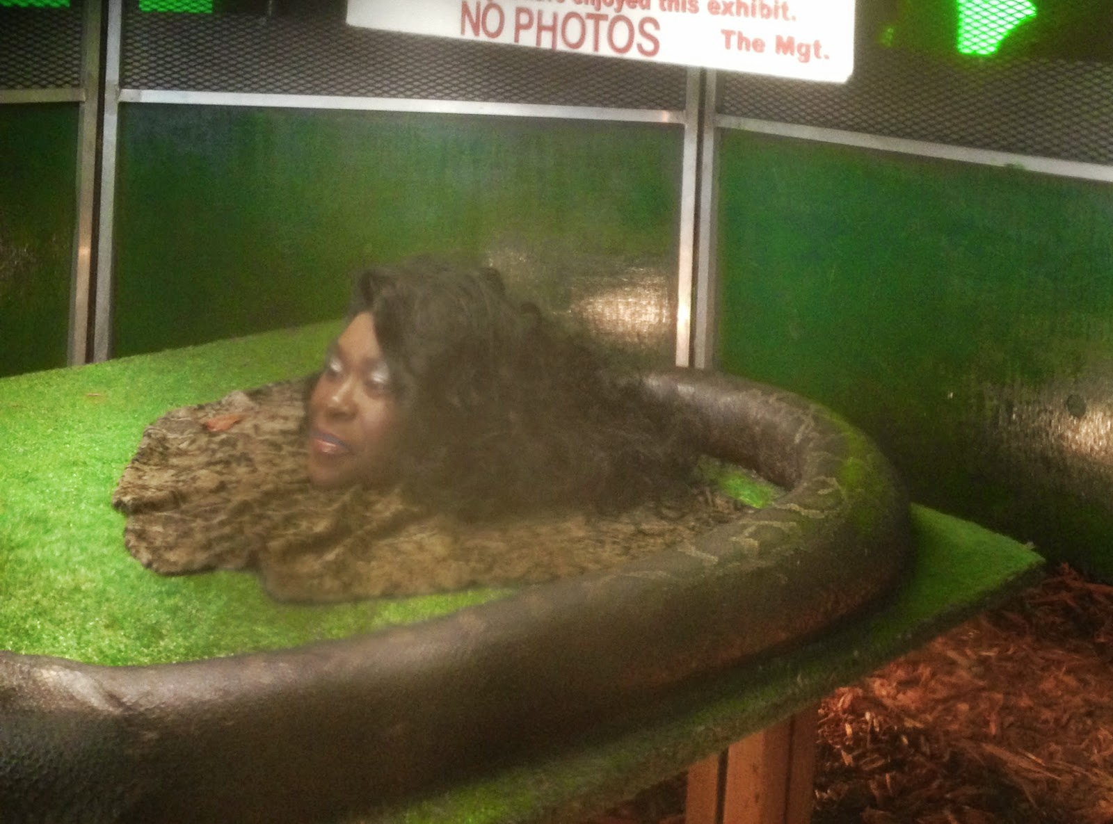 snake lady at the fair