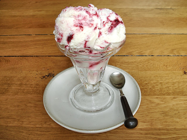 Ice-Cream and Frozen Dessert Round Up including sorbets, dairy-free ice-creams, frozen yogurts and toppings