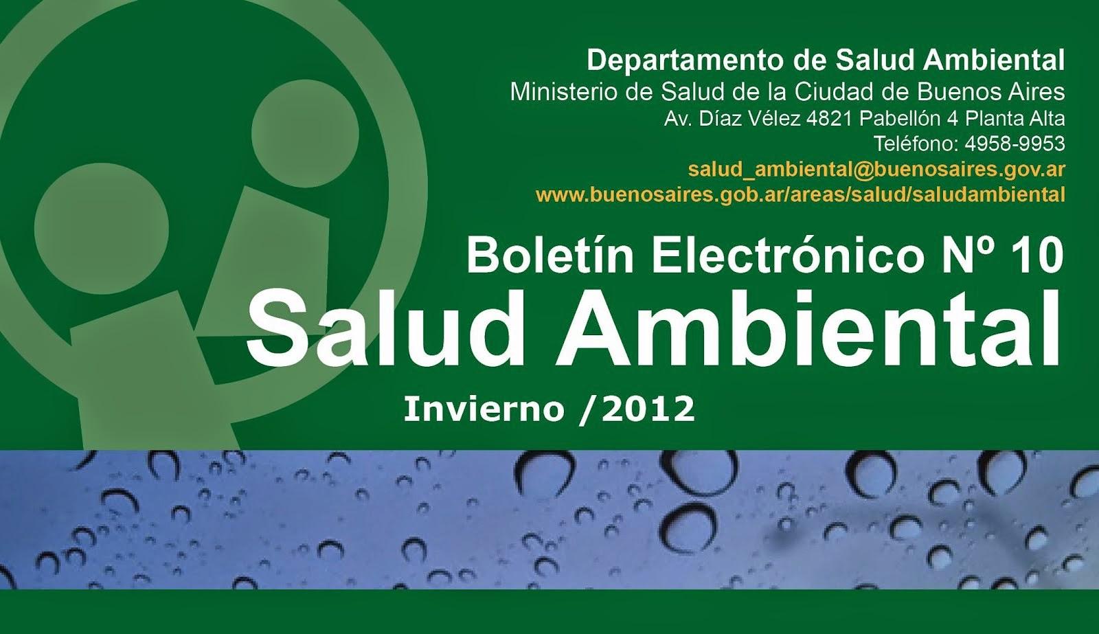 Boletín DSA Nº10 Invierno 2012