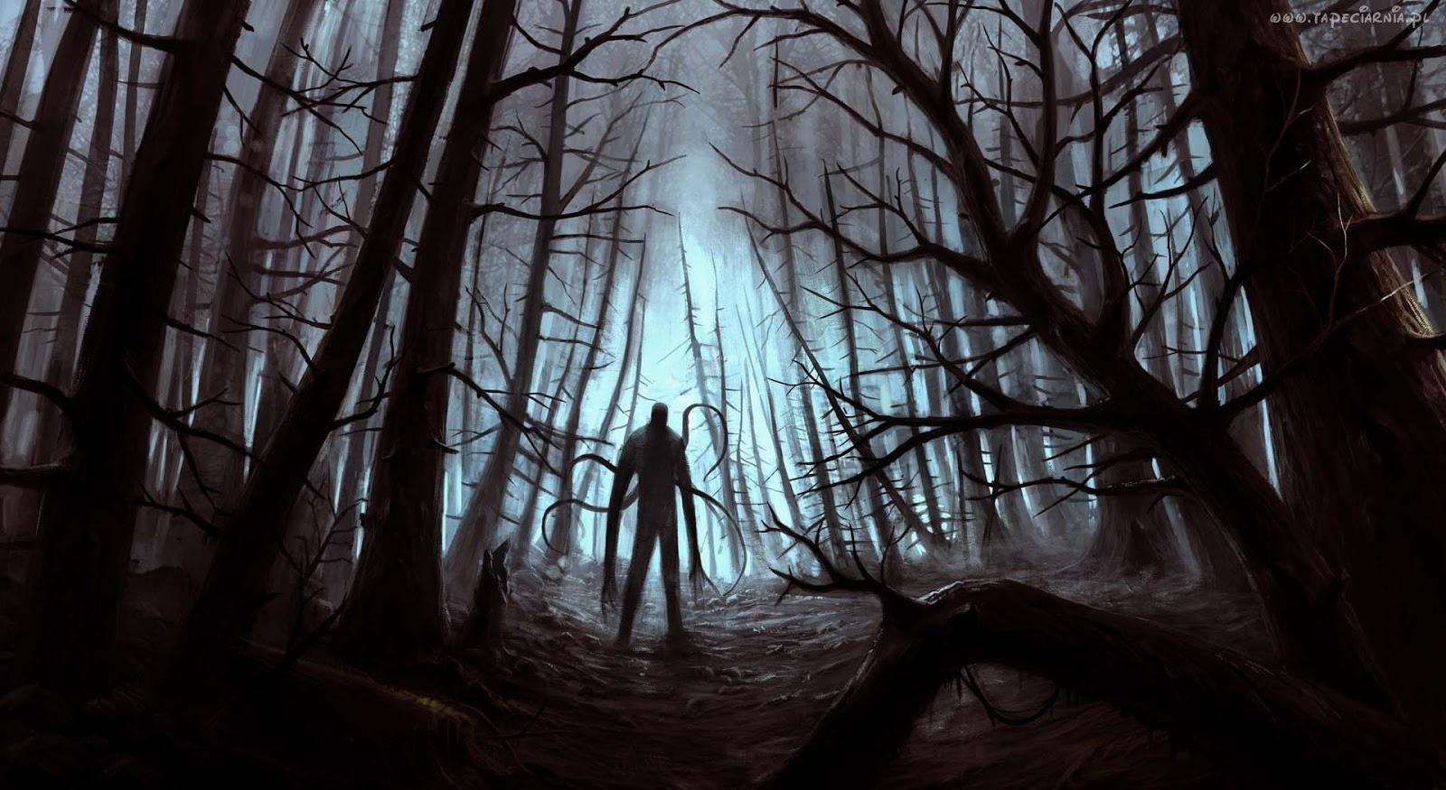 Znalezione obrazy dla zapytania Jedna osoba w lesie