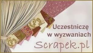 http://scrapek.blogspot.ie/2014/01/wyzwanie-nr24-zakadka-do-ksiazki.html