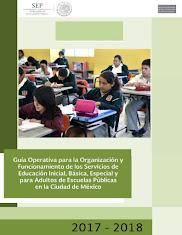 Guía operativa 2017 - 2018