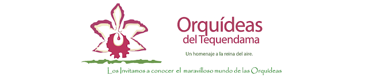 Catalogo Orquideas del Tequendama