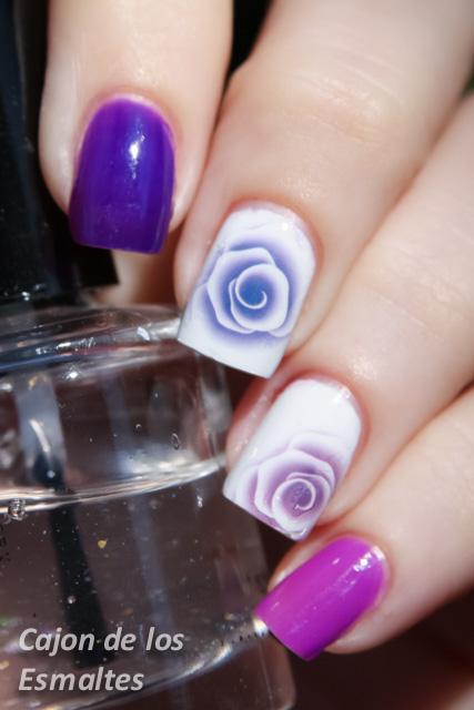 Imagenes De Rosas Y Orquideas - Orquídeas rosas Imágenes y fotos Florespedia
