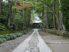 壽福寺参道