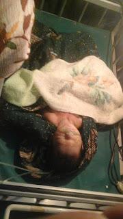 Masyarakat Palengaan Digegerkan Penemuan Bayi