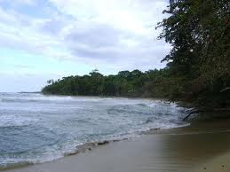 Playa Cocles, Limón