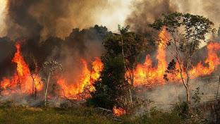 Amazonía: cómo se originaron los incendios que están causando estragos en Suramérica