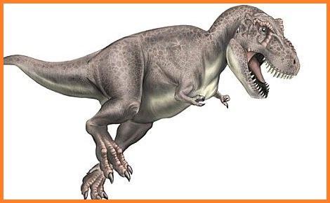 Tyrannosaurus : Dinosaurios del mundo