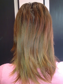Dye your Sunkissed hair to a warm blondish brown colour