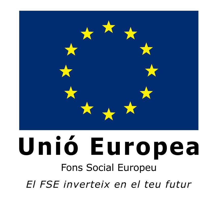FONS EUROPEU-ERASMUS