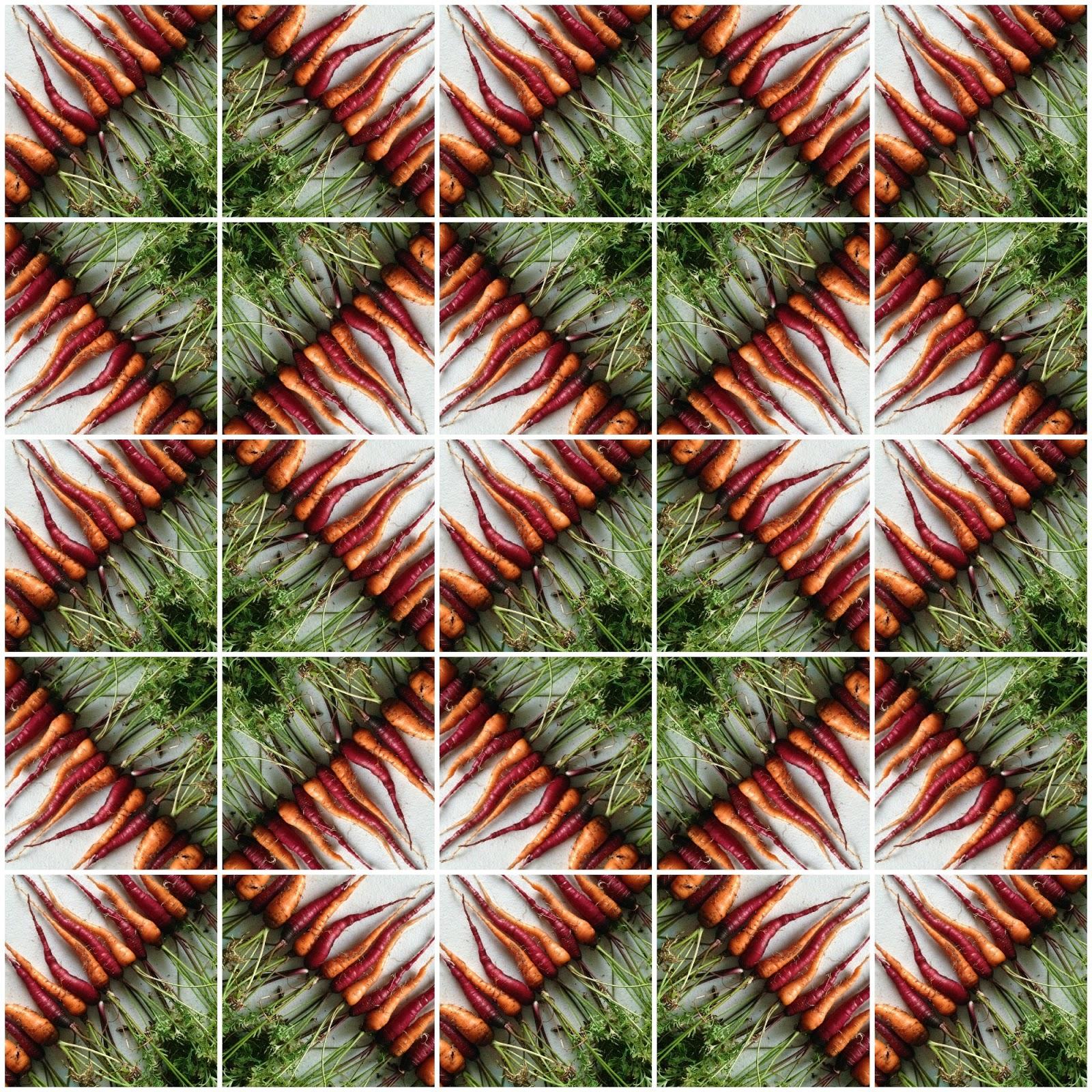 http://1.bp.blogspot.com/-mmnZGFFBLJ4/U-lanaFkdoI/AAAAAAAAT2Y/YnR2r4rCORY/s1600/carrot+collage.jpg