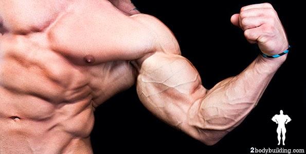 تضخيم العضلات في وقت قصير