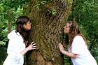 Yo, un árbol y Carmen
