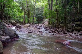 Rio Marquezote, Urumita