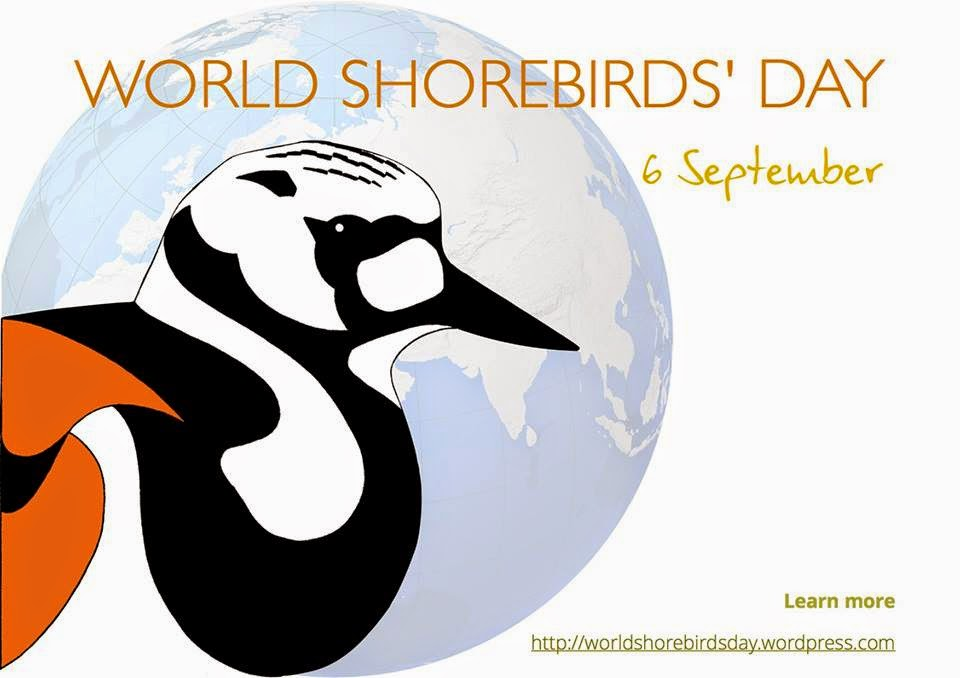 World Shorebird Day Sept 6th 2014