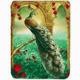 Grosir Selimut Kendra Soft Panel Blanket Peacok