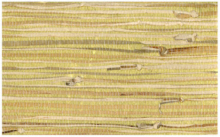 Grasscloth wallpaper Pattern # SBK22187